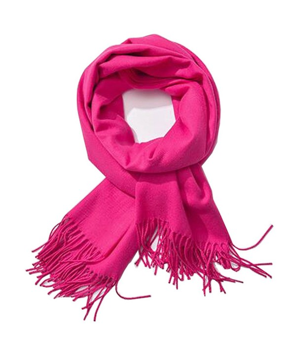 Soft Cashmere Feel Scarf- Bien-Zs Large Pashmina Shawls Wraps Winter Scarf for Women Men Gift - Pink - CZ1880QKTCL