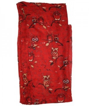 Ted Jack Wise Print Scarf in Fashion Scarves