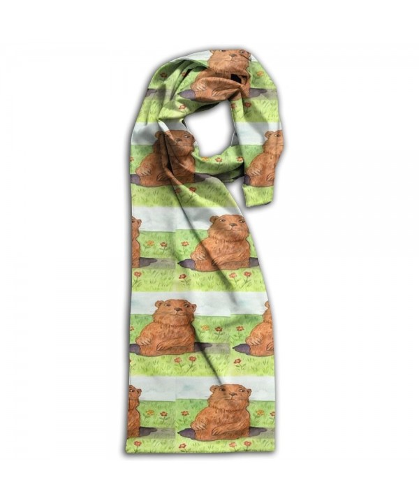 Whimsical Groundhog Day Out Scarf Large Soft Women Men Scarves Winter Warm Wrap Shawl - CS1890AOYRT